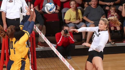 Austin Peay Volleyball start strong but fades later in loss to Western Kentucky, Tuesday. (APSU Sports Information)