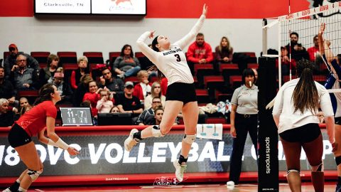 Austin Peay Volleyball travels to Missouri for the Mizzou Invitational this Friday and Saturday. (APSU Sports Information)