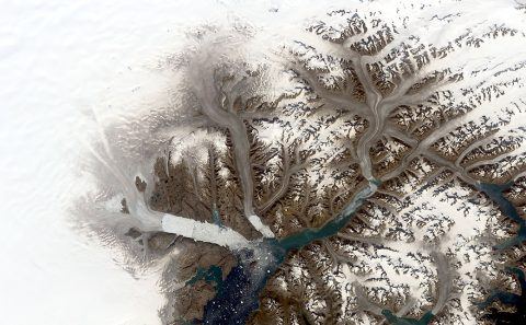 A composite image from Landsat 1 scenes collected in September 1972. Comparing images across the span of the Landsat mission provides a record of almost five decades of change to this region of southeast Greenland. (NASA/Christopher Shuman)