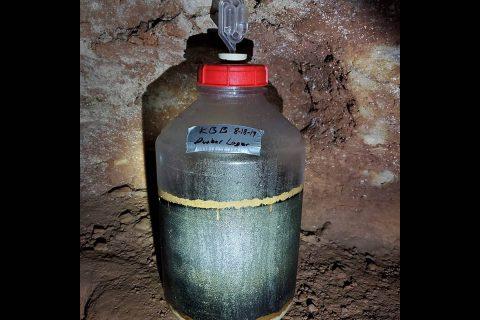 Dunbar Draught fermenting deep inside Clarksville's Dunbar Cave.