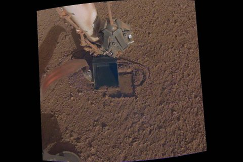 """This image shows NASA InSight's heat probe, or """"mole,"""" digging about a centimeter (half an inch) below the surface last week. Using a technique called """"pinning,"""" InSight recently pressed the scoop on its robotic arm against the self-hammering mole in order to help it dig. (NASA/JPL-Caltech)"""