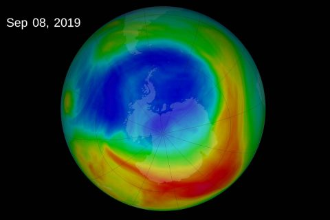 The 2019 ozone hole reached its peak extent of 6.3 million square miles (16. 4 million square kilometers) on September 8th. Abnormal weather patterns in the upper atmosphere over Antarctica dramatically limited ozone depletion this year. (NASA)
