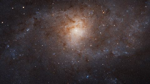 The Triangulum galaxy, also known as Messier 33 or M33, as imaged by the Hubble Space Telescope. (NASA, ESA, and M. Durbin, J. Dalcanton, and B. F. Williams (University of Washington))