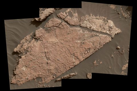 """The network of cracks in this Martian rock slab called """"Old Soaker"""" may have formed from the drying of a mud layer more than 3 billion years ago. The view spans about 3 feet (90 centimeters) left-to-right and combines three images taken by the MAHLI camera on the arm of NASA's Curiosity Mars rover. (NASA/JPL-Caltech/MSSS)"""