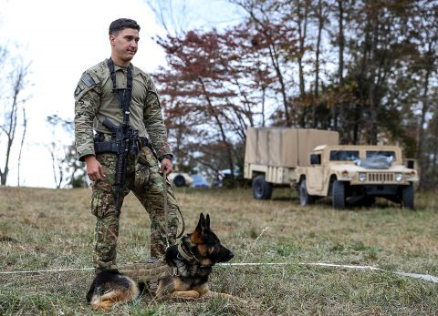 Spc. Steven Johnson, Sandusky, Ohio native and military working dog handler for the 510th Military Police Detachment, 716th Military Police Battalion, 101st Sustainment Brigade, stands with his military working dog, Aida, while other 716th MP Bn. Soldiers gather around to watch his demonstration of how to properly muzzle a military working dog, at Range 65, Fort Campbell, KY, Nov. 6th. (Spc. Jiji Espinosa, 101st Sustainment Brigade Public Affairs)