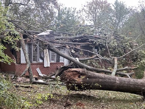Clarksville Street Department is busy removing storm debris across the City that has been moved by residents and piled along the roadside. However, residents should know that the Department does not remove debris processed by a commercial tree-removal service.