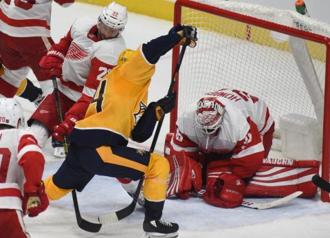 Nashville Predators Defeat Detroit Red Wings 6-1 (Michael Strasinger)