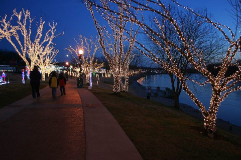 Residents can connect to free WiFi at McGregor Park during Christmas on the Cumberland.