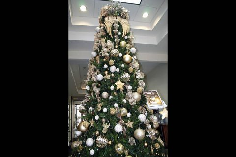 Clarksville invites families to place star on tree at City Hall