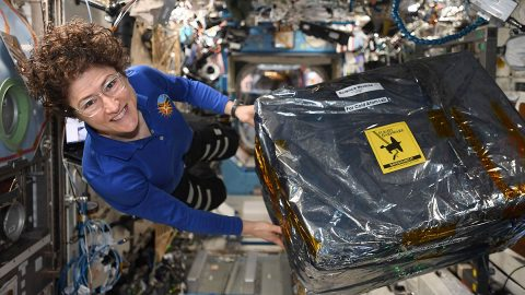 NASA Astronaut Christina Koch unloads new hardware for the Cold Atom Lab aboard the International Space Station the week of December 9th, 2020.  (NASA)
