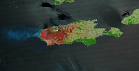 This image taken by the Terra satellite and enhanced by using correction reflectance bands on the MODIS (Moderation Resolution Imaging Spectroradiometer) highlight in brighter colors the areas on Kangaroo Island that have been burned by the bushfires in late December 2019 and early January 2020. (NASA Worldview)