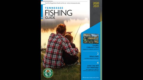 2020-21 Tennessee Fishing Guide