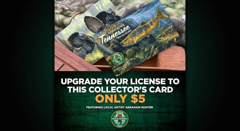 New 2020-21 Tennessee Hunting and Fishing Licenses Now on Sale.