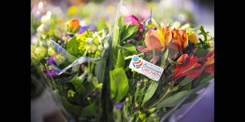 Flower Farmers Working Hard To Keep Flowers Moving In Time Of Crisis. (Certified American Grown)
