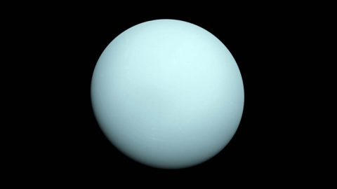 Voyager 2 took this image as it approached the planet Uranus on Jan. 14, 1986. The planet's hazy bluish color is due to the methane in its atmosphere, which absorbs red wavelengths of light. (NASA/JPL-Caltech)