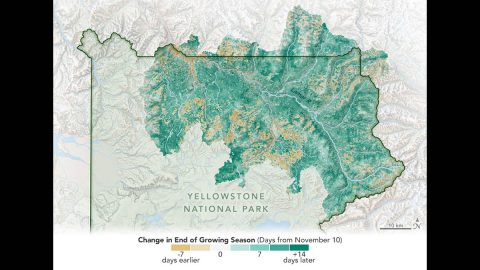A study using data from two NASA Earth science satellites reveals that the season for vegetation growth has been getting longer in Yellowstone National Park. Likely a result of climate change decreasing the severity of winters and warming average temperatures overall, this effect on the productivity of grasslands has contributed to the growing number of bison in the park. (Joshua Stevens/NASA Earth Observatory)