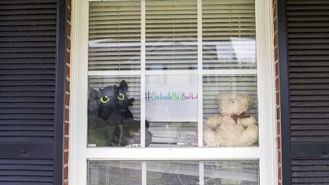 Clarksville-Montgomery County Teddy Bear Hunt - #ClarksvilleMoCoBearHunt