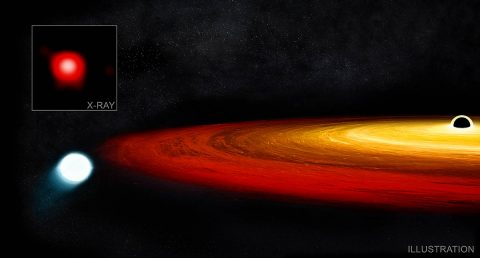 Astronomers may have discovered a new kind of survival story: a star that had a brush with a giant black hole and lived to tell the tale through exclamations of X-rays. Data from NASA's Chandra X-ray Observatory and ESA's XMM-Newton uncovered the account that began with a red giant star wandering too close to a supermassive black hole in a galaxy about 250 million light years from Earth. (X-ray: NASA/CXO/CSIC-INTA/G.Miniutti et al.; Illustration: NASA/CXC/M. Weiss)
