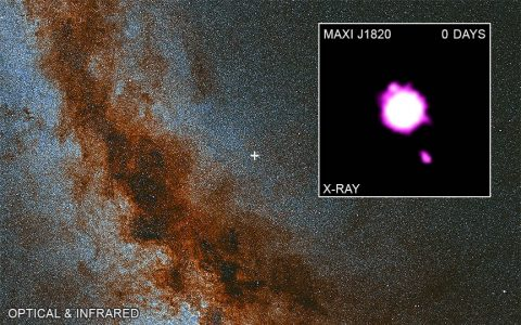 "Astronomers have caught a stellar-mass black hole hurling hot material into space at close to the speed of light using four Chandra observations taken in 2018 and 2019. ""Day 0"" corresponds to the first observation on November 13th, 2018 and the jet launched on July 7th, 2018. A large optical and infrared image of the Milky Way galaxy is shown, with the location of MAXI J1820+070 marked by a cross.  (X-ray: NASA/CXC/Université de Paris/M. Espinasse et al.; Optical/IR:PanSTARRS)"