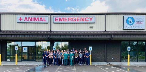 Nashville Veterinary Specialists + Animal Emergency - Clarksville