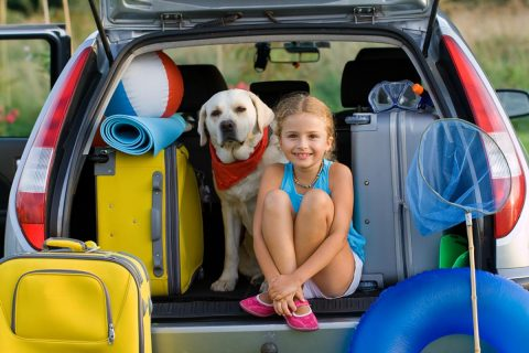 When it is safe to travel, AAA expects vacationers will explore America's backyard. (AAA)