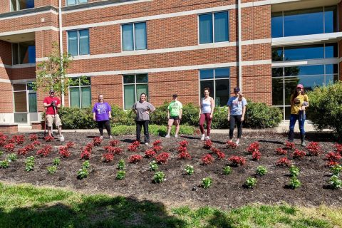Volunteers planted around 3,600 plants on the campus of Austin Peay State University. (APSU)