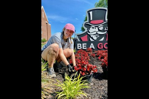 Thirty-four volunteers planted nearly 3,600 plants at Austin Peay State University over four days. (APSU)