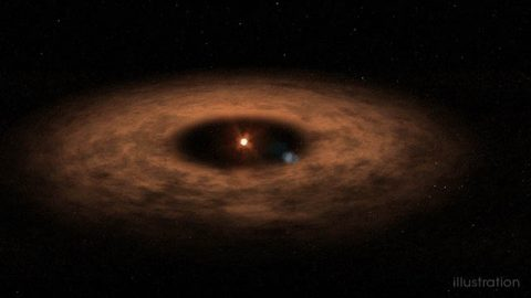 This artist's concept shows the dusty disk surrounding the star AU MIcroscopii. Astronomers have studied this system extensively but only recently identified the presence of a planet there. The find provides a laboratory for studying planet evolution and formation. (NASA's Goddard Space Flight Center/Chris Smith (USRA))