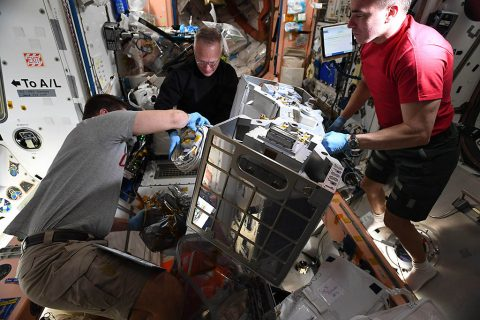 Astronauts Robert Behnken, Doug Hurley, and Chris Cassidy prepare RiTS for installation. (NASA)