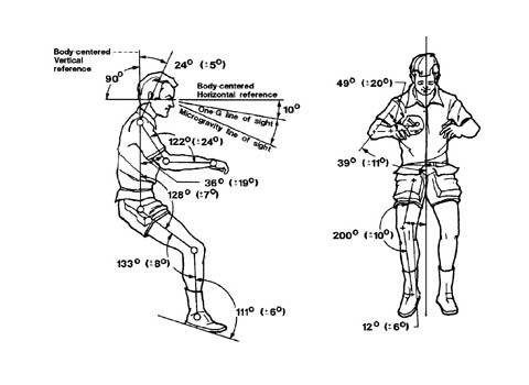 The neutral body posture shown here was created from measurements of 12 people onboard Skylab. (NASA)