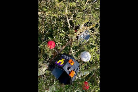 The payload landed 60 feet high in a pine tree along the Cumberland River in Kentucky. (APSU)
