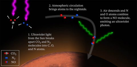 The diagram explains the cause of Mars' glowing nightside atmosphere. On Mars' dayside, molecules are torn apart by energetic solar photons. Global circulation patterns carry the atomic fragments to the nightside, where downward winds increase the reaction rate for the atoms to reform molecules. The downwards winds occur near the poles at some seasons and in the equatorial regions at others. The new molecules hold extra energy which they emit as ultraviolet light. (NASA/MAVEN/Goddard Space Flight Center/CU/LASP)