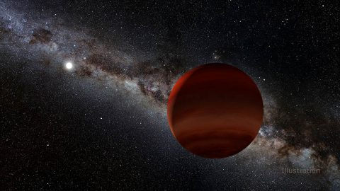 In this illustration, the small white orb represents a white dwarf (a remnant of a long-dead Sun-like star), while the foreground object is its newly discovered brown dwarf companion, spotted by citizen scientists working with a NASA-funded project called Backyard Worlds: Planet 9. (NOIRLab/NSF/AURA/P. Marenfeld/Acknowledgement: William Pendrill)