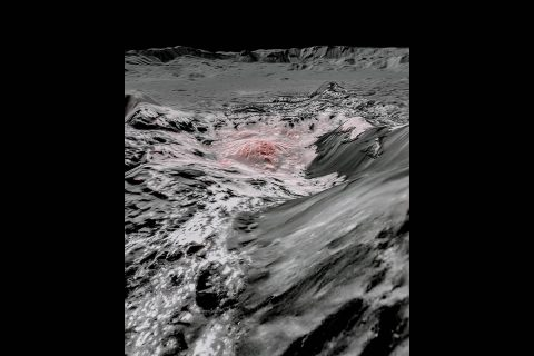 This mosaic image uses false color to highlight the recently exposed brine, or salty liquids, that were pushed up from a deep reservoir under Ceres' crust. In this view of a region of Occator Crater, they appear reddish. (NASA/JPL-Caltech/UCLA/MPS/DLR/IDA)