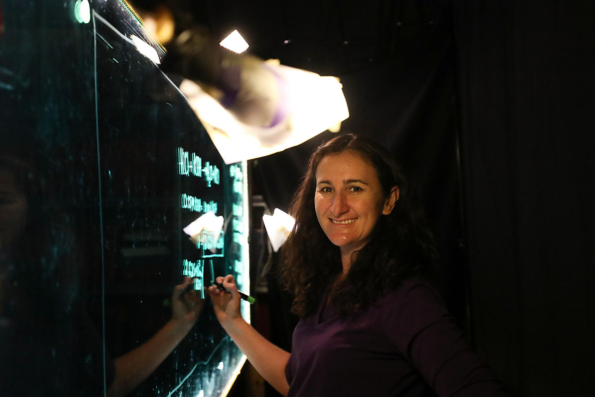 Dr. Leslie Hiatt came up with the idea after she learned a stastical concept on a light board. (APSU)
