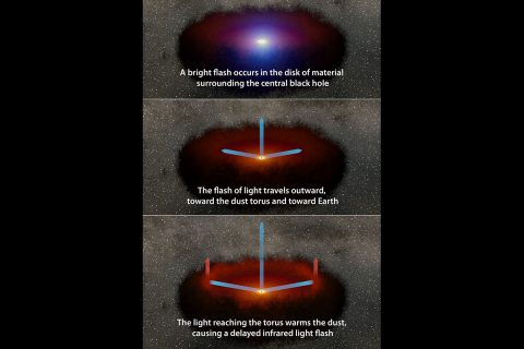 A disk of hot material around a supermassive black hole emits a burst of visible light, which travels out to a ring of dust that subsequently emits infrared light. The blue arrows show the light from the disk moving toward the dust and the light from both events traveling toward an observer. (NASA/JPL-Caltech)