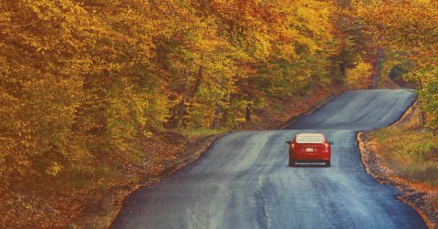 A vast majority of trips this fall will be road trips. (AAA)