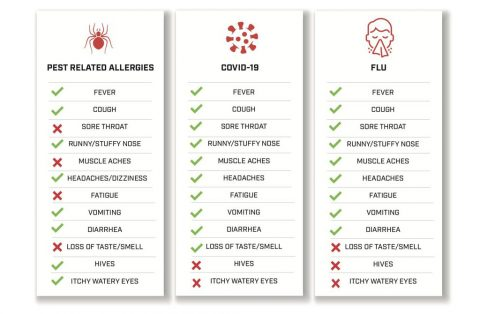Infographic determining the symptom differences between COVID-19, allergies, cold or flu. (U.S. Pest Protection)
