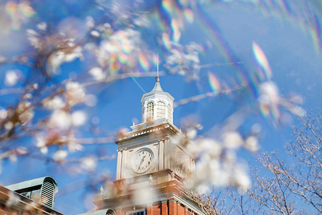 Austin Peay State University Campus in the Spring. (APSU)