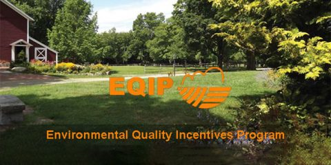 U.S.Department of Agriculture Natural Resources Conservation Service's Environmental Quality Incentives Program.