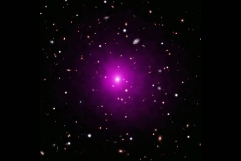 This composite image of Abell 2261 contains optical data from Hubble and the Subaru Telescope showing galaxies in the cluster and in the background, and Chandra X-ray data showing hot gas (colored pink) pervading the cluster. (NASA)