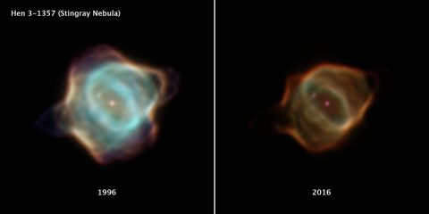 This image compares two drastically different portraits of the Stingray nebula captured by NASA's Hubble Space Telescope 20 years apart. The image on the left, taken with the Wide Field and Planetary Camera 2 in March 1996, shows the nebula's central star in the final stages of its life. The gas being puffed off by the dying star is much brighter when compared to the image of the nebula at the right, captured in January 2016 using the Wide Field Camera 3. (NASA, ESA, B. Balick (University of Washington), M. Guerrero (Instituto de Astrofísica de Andalucía), and G. Ramos-Larios (Universidad de Guadalajara))