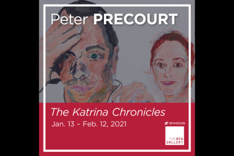The Katrina Chronicles
