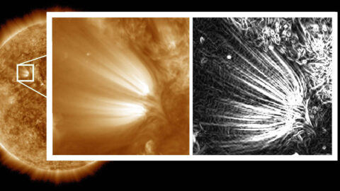 "Scientists used image processing on high-resolution images of the Sun to reveal distinct ""plumelets"" within structures on the Sun called solar plumes. The full-disk Sun and the left side of the inset image were captured by NASA's Solar Dynamics Observatory in a wavelength of extreme ultraviolet light and processed to reduce noise. The right side of the inset has been further processed to enhance small features in the images, revealing the edges of the plumelets in clear detail. (NASA/SDO/Uritsky, et al)"
