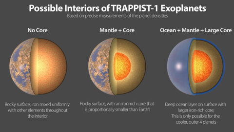 Three possible interiors of the TRAPPIST-1 exoplanets. All seven planets have very similar densities, so they likely have a similar compositions. (NASA/JPL-Caltech)