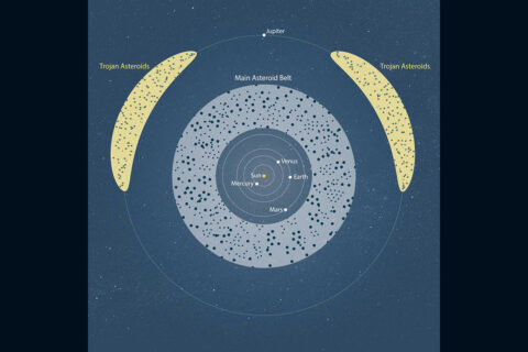 The main asteroid belt lies between Mars and Jupiter, whereas Trojan asteroids both lead and follow Jupiter. Scientists now know that asteroids in the early solar system (4.6 billion years ago) adhered together and eventually formed the inner planets, including Earth. (NASA/ESA/J. Olmsted/STScI)