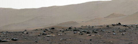 This shows the rim of Jezero Crater as seen in the first 360-degree panorama taken by the Mastcam-Z instrument aboard NASA's Perseverance Mars rover. (NASA/JPL-Caltech/MSSS/ASU)