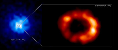 """On the left, data from NASA's Chandra X-ray Observatory shows a portion of the remains of an exploded star known as supernova 1987A. On the right, an illustration of what may lie at the center of the supernova remnant, a structure known as a """"pulsar wind nebula. (NASA/CXC)"""