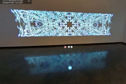 Austin Peay State University's 360-degree virtual walk-through of Splan's Entangled Entitiesh. (APSU)