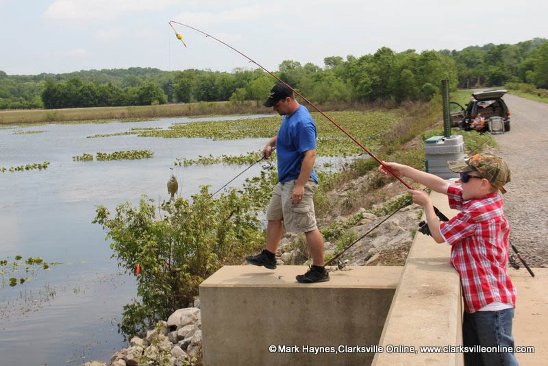 Cross Creeks National Wildlife Refuge